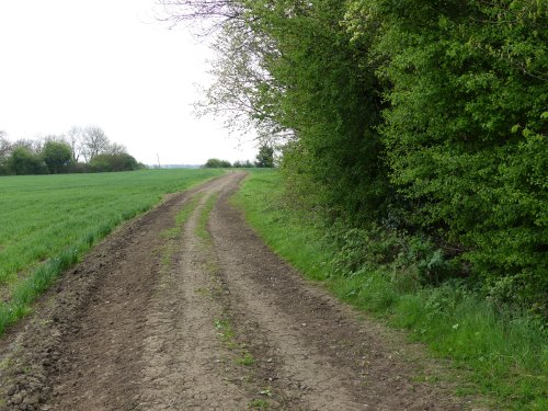 Footpath not bridleway